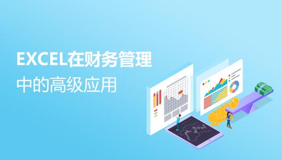 EXCEL在财务管理中的高级应用